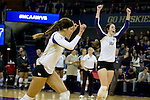 LSU vs UW Volleyball 12/7/13