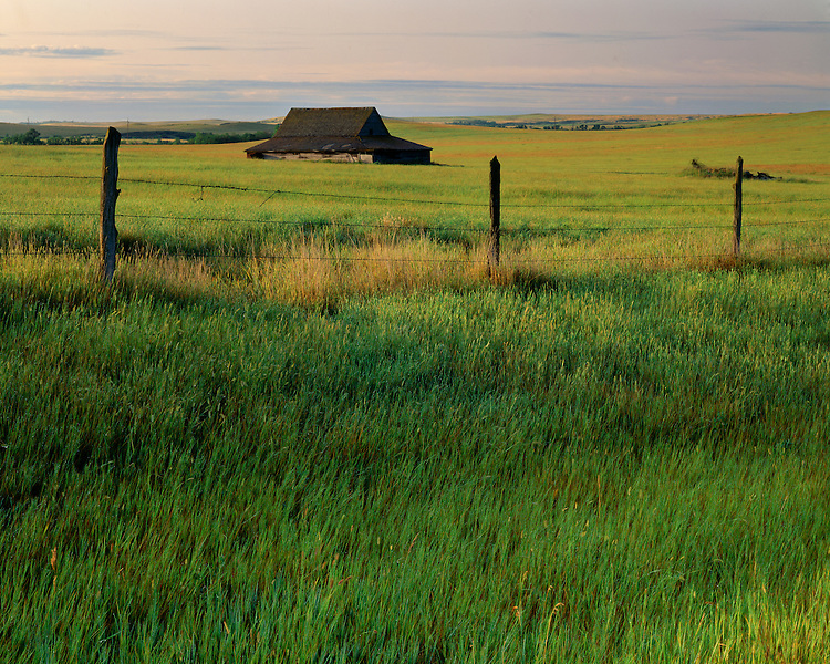 Sunrise light on old barn; McKenzie County; Little Missouri National Grasslands, ND