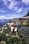 Young boy at the edge of a tide pool, Acadia National Park, Isle Au Haut, Maine, USA