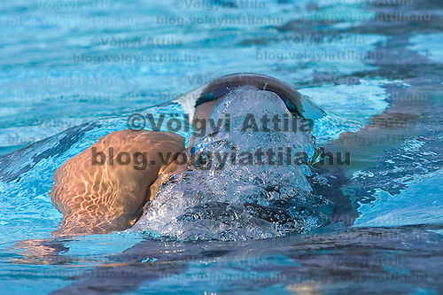 Ryan Lochte (USA) competes in 400 m Men's Individual Medley Swimming competition during the 13th FINA Swimming World Championships held in Rome, Italy. Sunday, 02. August 2009. ATTILA VOLGYI