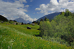 Alpine peaks, forests and meadows.  Imst district, Tyrol, Tirol, Austria.