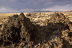 Summer storm over the Black Rock Lava Flow in Nevada's Big Sand Spring Valley.