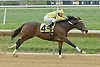 Back Forty  winning at Delaware Park on 10/25/12