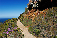 Path at Cape of Good Hope, Western Cape Province, South Africa