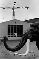 Switzerland. Canton Luzern. Buchrain. The Hydraul Technic AG company is the general importer of the MAMMUT lift, well known for sideboards for commercial vehicles. A Mammut replica stands on the parking lot outside the company' s buildings. Mastodons are any species of extinct mammutid proboscideans in the genus Mammut, distantly related to elephants. Mastodons lived in herds and were predominantly forest dwelling animals that fed on a mixed diet obtained by browsing and grazing with a seasonal preference for browsing, similar to living elephants. Tusks are elongated, continuously growing front teeth, usually but not always in pairs, that protrude well beyond the mouth of certain mammal species. They are elongated incisors in the case of elephants. A construction crane at work on a nearby  construction site. 9.11.2017 © 2017 Didier Ruef