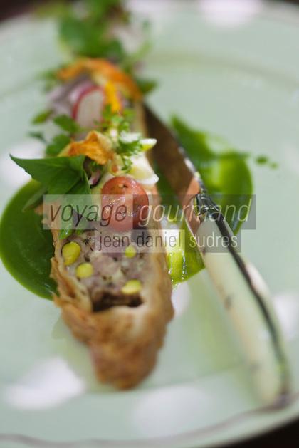 Europe/France/Provence-Alpes-Côte d'Azur/84/Vaucluse/Lubéron/Cucuron: Pâté pantin de canard aux pistaches et foie gras, recette d'Eric Sapet, restaurant La Petite Maison de Cucuron