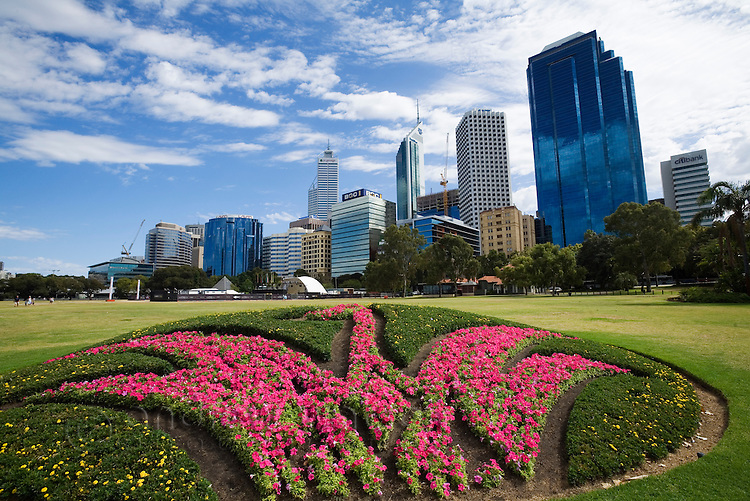 A swan - the state bird emblem of Western Australia - is created in flowers on the Perth foreshore.  Perth, Western Australia, AUSTRALIA.