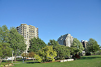 Trees and apartment buildings as seen from Centennial Park, Sarnia.