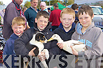 Ross Sugrue, Eoin Sugrue, Tristan Jones and Aaron Lynch Tralee looking at the puppies and ducks on offer at the Milltown Fair on Sunday