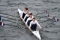 Crew: 225  Walton RC  Event: Mixed Quads<br /> <br /> Schools' Head of the River 2017<br /> <br /> To purchase this photo, or to see pricing information for Prints and Downloads, click the blue 'Add to Cart' button at the top-right of the page.