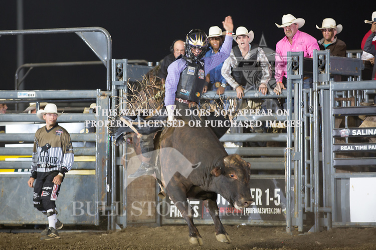 Koal Livingston rides Light Out's ( Julio Moreno / Dallas Schott ) for 84.5 during the first round of the PBR Real Time Pain Relief Velocity Tour event in Salinas, CA - Photo by Andre Silva