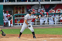 Alberti Chavez (16) of the Billings Mustangs at bat against the Orem Owlz in Game 2 of the Pioneer League Championship at Home of the Owlz on September 16, 2016 in Orem, Utah. Orem defeated Billings 3-2 and are the 2016 Pioneer League Champions. (Stephen Smith/Four Seam Images)