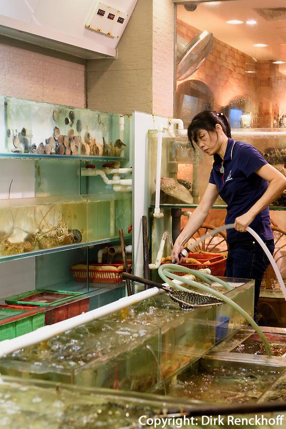 Fischh&auml;ndler in Kowloon, Hongkong, China<br /> Fish dealer in Kowloon, Hongkong, China