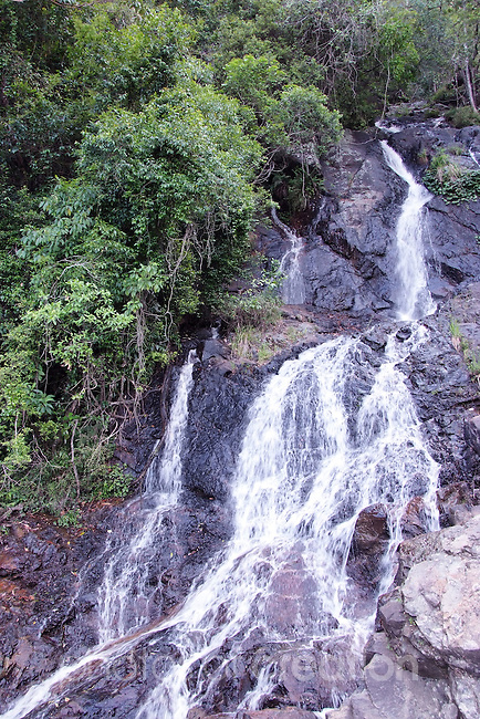 Newell Falls, Waterfall Way, Dorrigo NSW
