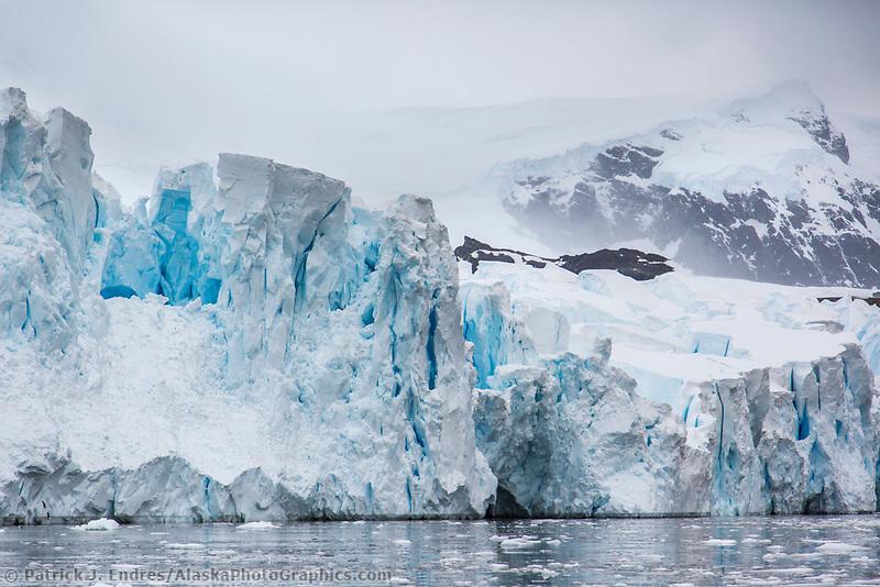 Tidewater glacier, Danco Island, Antarctica
