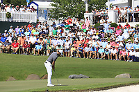 Rory McIlroy (NIR) putts on the 18th green during Friday's Round 2 of the 2017 PGA Championship held at Quail Hollow Golf Club, Charlotte, North Carolina, USA. 11th August 2017.<br /> Picture: Eoin Clarke | Golffile<br /> <br /> <br /> All photos usage must carry mandatory copyright credit (&copy; Golffile | Eoin Clarke)