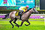 ELMONT, NY -MAY 12: A Raving Beauty,#6, ridden by Irad Ortiz Jr., wins the Beaugay Stakes on  at Belmont Park on May 12, 2018 in Elmont, New York. (Photo by Dan Heary/Eclipse Sportswire/Getty Images)