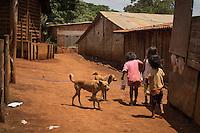 SAO PAULO, SP, 09.11.2013. ANIMAIS ABANDONADOS NA ALDEIA GUARANI TEKOA PYAU.  Aproximadamente 900 animais (600 cachorros e 300 gatos) abandonados  na estrada turística do Jaraguá e resgatados pelos índios vivem na  aldeia guarani Tekeo Pyau . Os índios e os animais vivem em situação de extrema pobreza e sobrevivem graças a doações e ajudas. Cerca de 160 famílias, aproximadamente 800 índios vivem na Aldeia que fica localizada na entrada do Pico do Jaraguá, zona oeste da capital paulista.  . (Foto:Adriana Spaca/Brazil Photo Press)