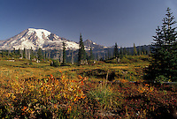 AJ3702, Mount Rainier, Mt. Rainier National Park, Cascades, Cascade Range, Washington, Spectacular view of the snow covered Mt. Rainier in the Cascade Mountain Range in Mount Rainier Nat'l Park in the state of Washington.
