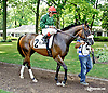 Tea Time before The Beautiful Day Stakes at Delaware Park on 7/3/14