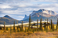 Trans Alaska oil pipeline, mt Sukakpak in the Brooks Range, Alaska.