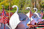 Swan boats in the BostonPublic Garden, Boston, MA, USA