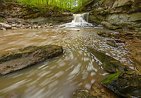 McCormick's Creek State Park, Indiana: McCormick's Creek falls in early spring