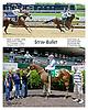 Stray Bullet winning at Delaware Park racetrack on 6/2/14