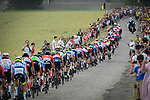 The peloton lined out on a cobbled sector at Thiméon during Stage 1 of the 2019 Tour de France running 194.5km from Brussels to Brussels, Belgium. 6th July 2019.<br /> Picture: ASO/Alex Broadway | Cyclefile<br /> All photos usage must carry mandatory copyright credit (© Cyclefile | ASO/Alex Broadway)