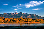 Late afternoon light warms the Sandia Mountains and the cottonwoods along the Rio Grande, near Albuquerque, New Mexico