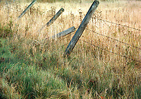 Fence North Ferrisburgh VT