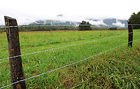 Stock photo: A panoramic view of a grassy prairie and  Cades cove hills covered in clouds as seen from a fence on the loop road in the great smoky mountain national park.
