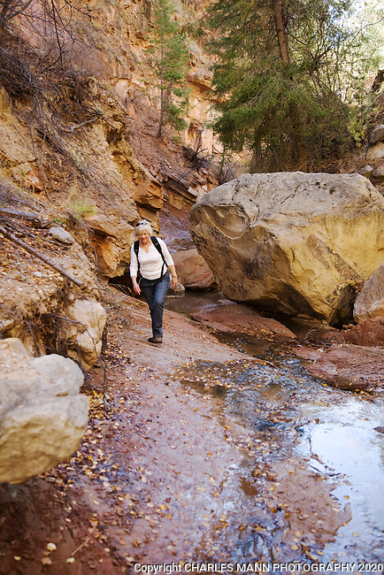A hiker makes her way up the narrow canyon of a stream on one of the many  trails at Ghost Ranch, a resort and conference center near the  northern New MExico village of Abiquiu.