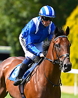 Alrajaa ridden by Jim Crowley goes down to the start of The M J Church Novice Stakes during Horse Racing at Salisbury Racecourse on 15th August 2019