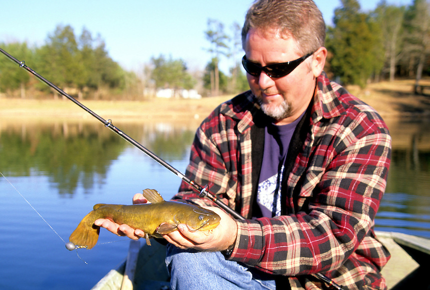 Angler with yellow bullheads caught in a Saline County, Arkansas farm pond
