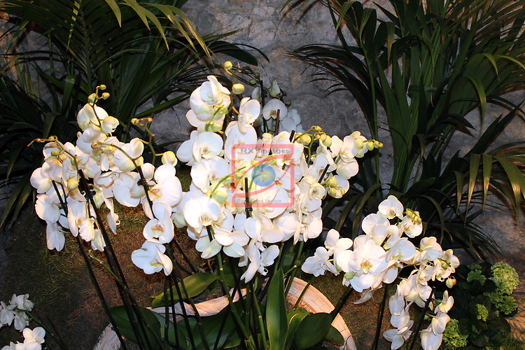 Girona Temps de Flors.<br /> 62a Exposicio de Flors, Monuments, Patis i Jardins.<br /> Banys Arabs.