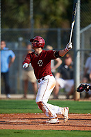 Boston College Eagles catcher Gian Martellini (2) at bat during a game against the Minnesota Golden Gophers on February 23, 2018 at North Charlotte Regional Park in Port Charlotte, Florida.  Minnesota defeated Boston College 14-1.  (Mike Janes/Four Seam Images)