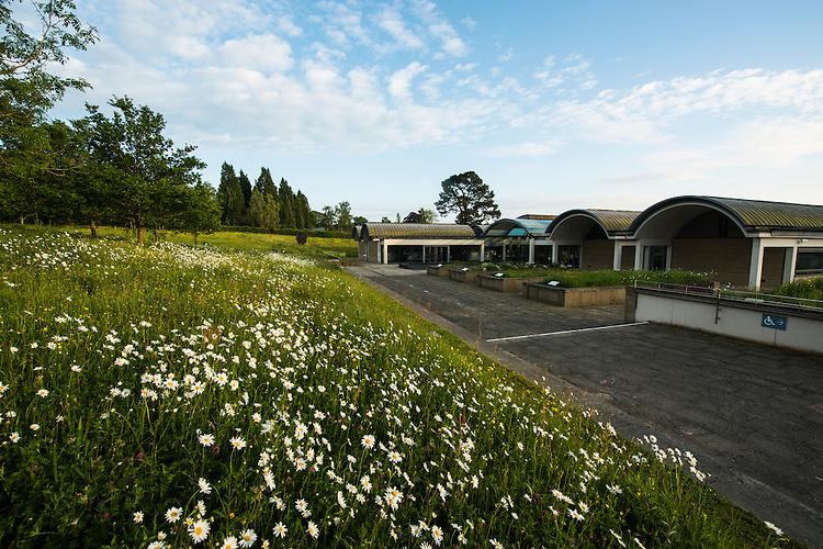 Meadow restoration at the Millenium seedbank. Wakehurst Place - Royal Botanic Gardens, Kew. Ardingly, West Sussex, UK.