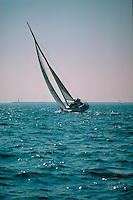 Long Beach, Ca, USA, Sailing  Sailboat Heeling, Pacific Ocean, USA