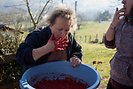 Mother and daughter try the salty point of the blood for blood sausages in traditional way pig slaughtering. Legasa (Basque Country). January 7, 2017. The slaughter traditionally takes place in the autumn and early winter and the work often is done in the open. (Gari Garaialde / Bostok Photo)