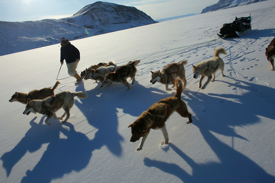 Inuit hunter Martin Umaaq urges on his team before jumping aboard his moving sled for a trip across the ice. A changing climate - which shows itself in warming temperatures, earlier summers, later winters, and shrinking and thinning sea ice - threatens the livelihoods and traditions of some of the last subsistence hunters on Earth, the Polar Inuit communities of far Northwest Greenland.