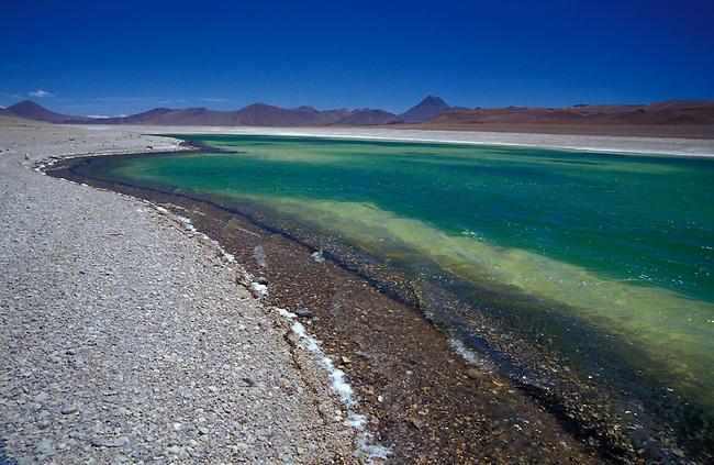 Route entre San Pedro de Atacama et Paso Jama. Laguna Verde. *** Laguna Verde between San Pedro de Atacama and Paso Jama, Chile.