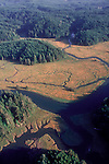 Elk River, aerial, Grays harbor, Southwest Washington timberlands,  Washington State, USA, Nature Conservancy, nature preserve,