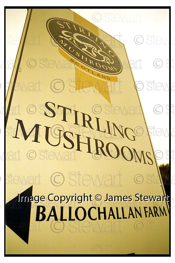 5TH January 2001.Copyright Pic : James Stewart   .THE MAIN SIGN AT STIRLING MUSHROOMS NR. CALLENDER.... .Payments to :-.James Stewart Photo Agency, Stewart House, Stewart Road, Falkirk. FK2 7AS      Vat Reg No. 607 6932 25.Office : 01324 630007        Mobile : 0421 416997.If you require further information then contact Jim Stewart on any of the numbers above.........