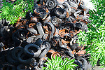 A pile of tires with rusty metal parts.