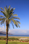 Israel, A view of the Sea of Galilee from Bet Gabriel