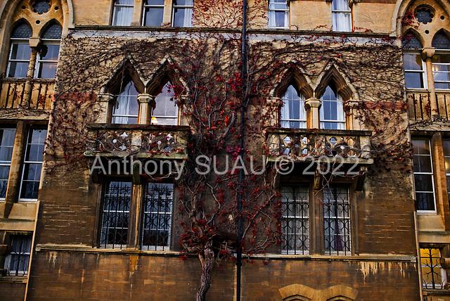 Oxford University<br /> Oxford, United Kingdom<br /> November 28, 2018<br /> <br /> Christ Church college.