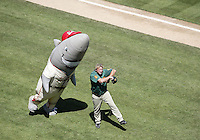 St. Louis Shark had a dance off with a Fresno Grizzlies dressed up player while entertaining the crowd at Cheney Stadium during the Fresno Grizzlies Vs the Tacoma Rainiers  game at Cheney Stadium in Tacoma, Washington.
