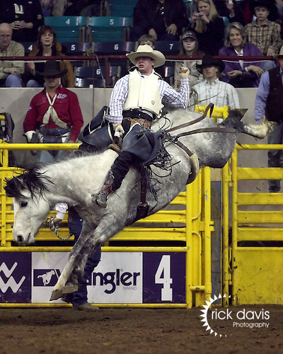 1/24/09--Photo by Rick Davis--PRCA cowboy Connor Kent of Fielding, Utah scores a 74 point bareback bronc ride on the bronc Multichem Little Bo Peep during action at the 103rd National Western Stock Show and Rodeo in Denver, Colorado.