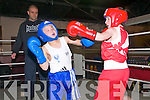 Trojan Boxing Club Show: Exchanging blows in the Trojan Boxing Club Show at Tomasin's Bar, Liselton on Saturday last were Donnacha Brosnan, Tralee Boxing  & John Moran, Trojan Club, Listowel.